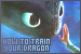 How to Train Your Dragon I: